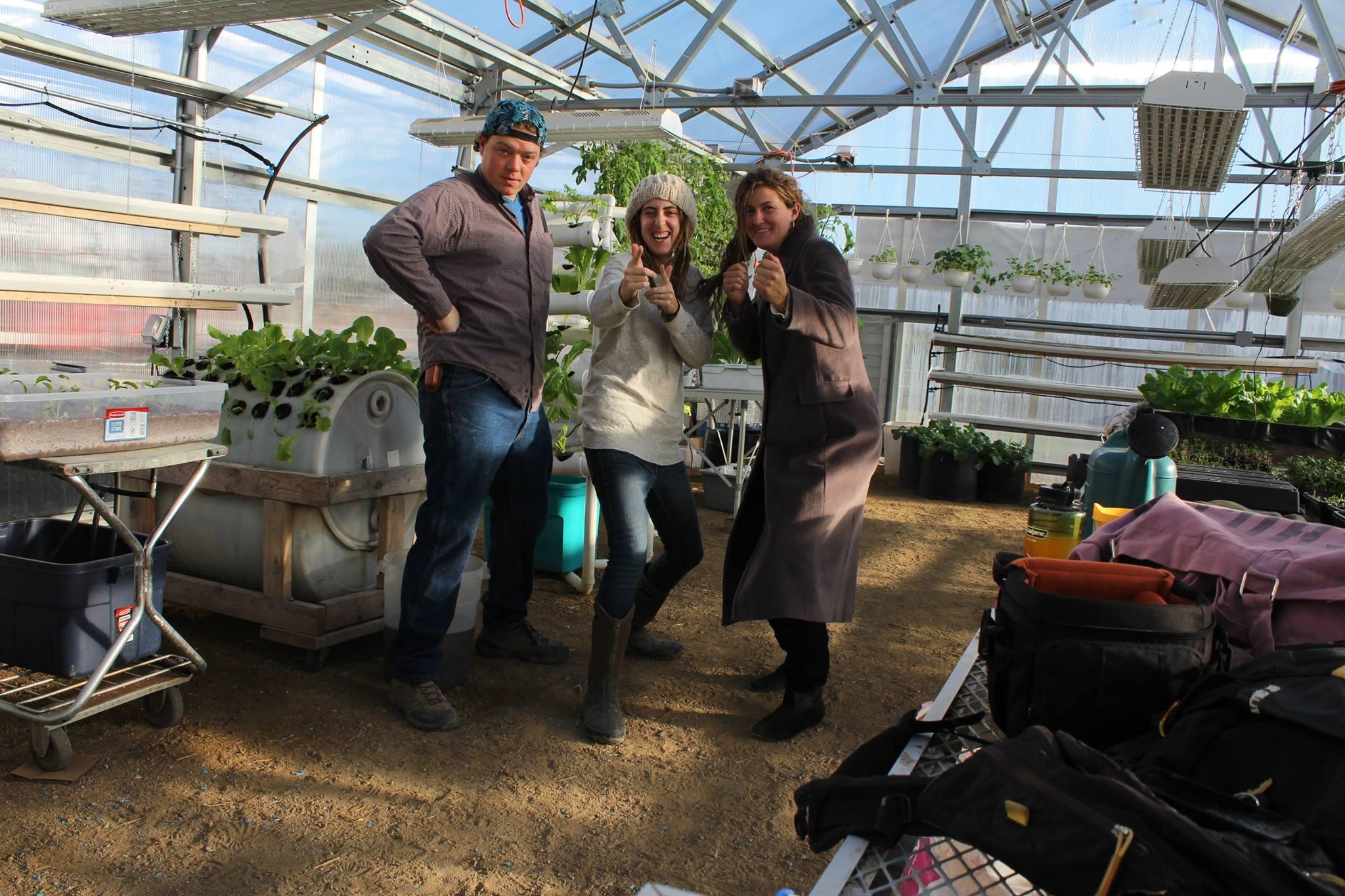 Greenhouse Church Seeds
