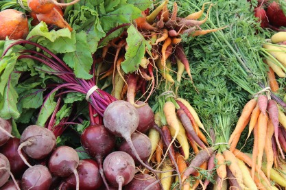 A selection of root crops